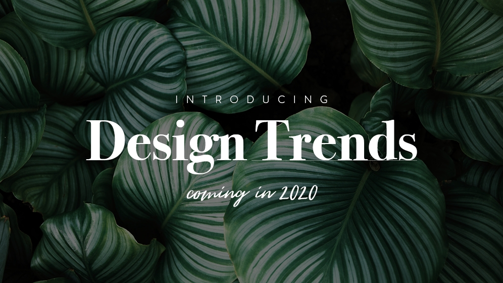 Design-Trends 2020: Sujet 05 / Design-Trends 2020 © echonet communication